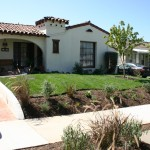 Drought Tolerant with Grass for Kids